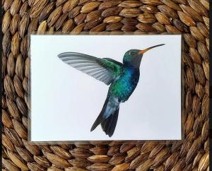 colibri-good