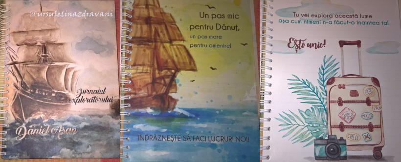 jurnal danut